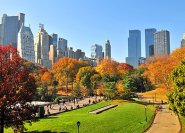 © Touch - Fotolia.com - Indian Summer in den USA.