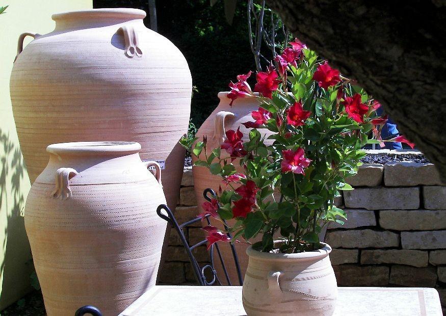 Einen mediterranen garten gestalten - Topfpflanzen garten ...