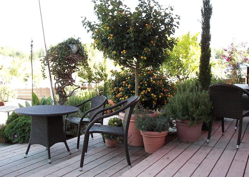 terrasse aus holz oder stein bauen die vorteile und nachteile von holzterrasse und. Black Bedroom Furniture Sets. Home Design Ideas