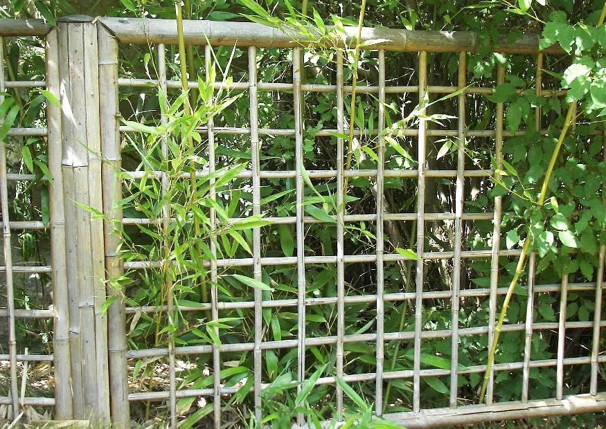 bambuszaun: einfache elegante bambuszäune für die japanische, Garten ideen