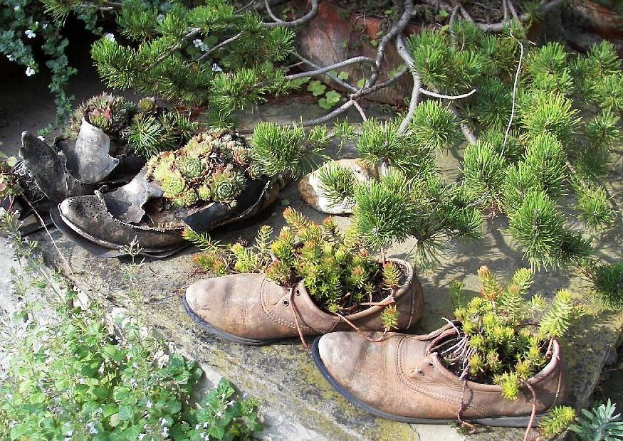Stöckelschuh Deko Garten Balkon Indoor Pflanze